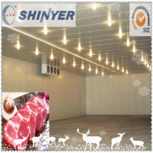 OEM Freezing Cold Room for Meat pictures & photos