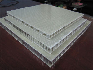 20mm Thick GRP/FRP Honeycomb Panels pictures & photos
