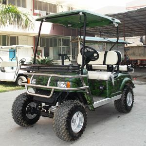 CE Approved 2 Seats Electric 4 Wheel Drive Hunting Car (DH-C2) pictures & photos