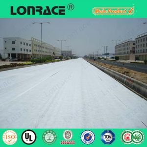 Hot Sell Non Woven Polyester Geotextile pictures & photos