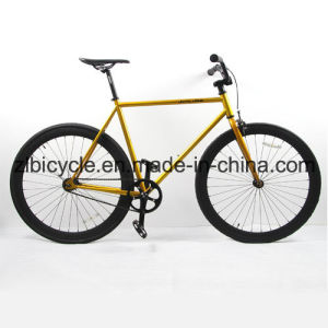 Professional Popular Single Speed Fixed Gear Bikes Fixies with Rim / Hub Alloy pictures & photos
