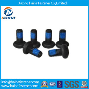 Black Pan Head/Button Head Screw with Geomet pictures & photos