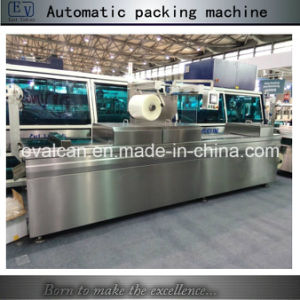 Automatic Vegetable Vacuum Packing Machine pictures & photos