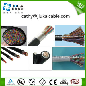 20 Pair Foam-Skin PE Insulated Telephone Cable, Communication Cable pictures & photos