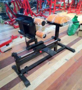 Fitness Equipment -Gym Equipment-Glut Ham Raise (SW-8016) pictures & photos