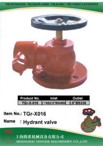 """Brass Fire Hydrant Angle Valve: Bsp 2-1/2"""" (Flange) pictures & photos"""