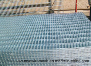 Hot Dipped Galvanized Steel Welded Wire Mesh in Panel pictures & photos