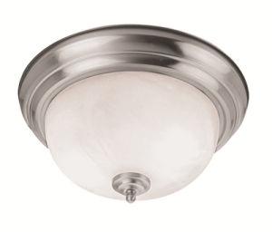 Moderm Simplism Style Ceiling Light (7118-91)