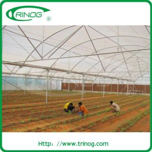 Multi span high tunnel greenhouse for agriculture growing pictures & photos