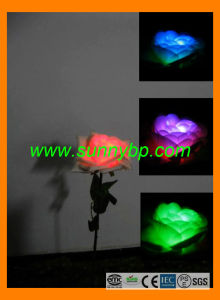 Color LED Rose Garden Light with Solar Power pictures & photos