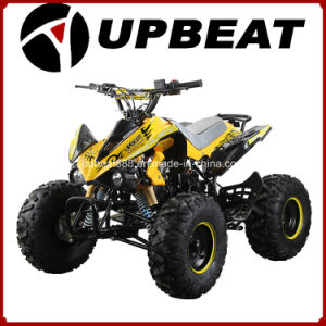 110cc/125cc Sports ATV Quad with 8inch off Road Wheel pictures & photos