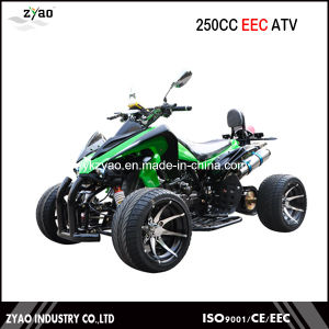 250cc EEC Racing Quad / EEC ATV with 12inch Wheel pictures & photos