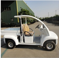 Electric Passenger Carrier with Cargo Box pictures & photos