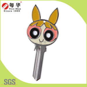 China Factory Directly Supplier Metal Key Blank pictures & photos