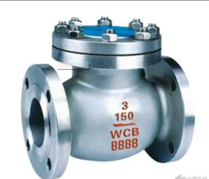 API Cast Steel Swing Type Check Valve pictures & photos