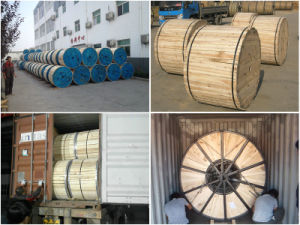 Aluminum Clad Steel Core Bare Conductor ACSR/Aw for Overhead Use pictures & photos