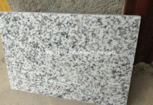 Polished G655 Grey Granite Slab for Wall/Floor pictures & photos