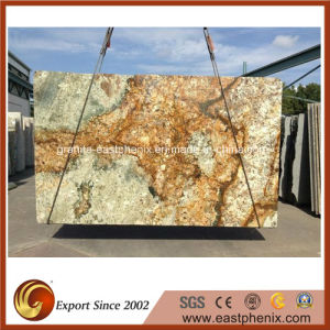 Supply Granite Slab for Wall Cladding pictures & photos