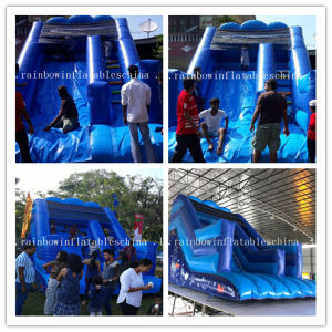 Hot Sale Inflatable Water Slide for Kids and Adults, Water Slide pictures & photos