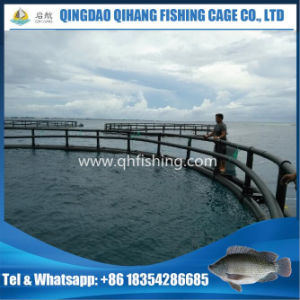 Floating Cage for Fish Farm in Ghana Hot Sale pictures & photos