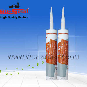 Project Weatherproof Silicone Sealant