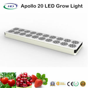 Popular Apollo 20 LED Grow Light for Indoor Plant Gardening pictures & photos