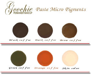 Goochie Microblading Paste Pigments Eyebrows Permanent Makeup Inks pictures & photos