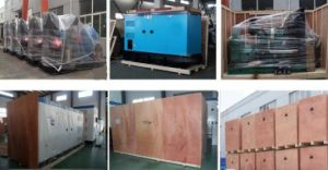 Ce Approved 50kw Biogas Powered Generator pictures & photos