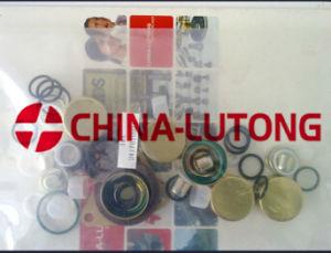 Fuel Injection Pump Rebuild Kit-Ve Diesel Pump Repair Kit pictures & photos