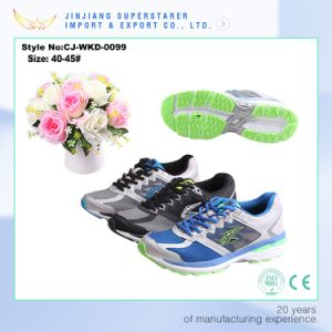 2017 New Design Men Sport Shoe Manufacturer in China Factory pictures & photos