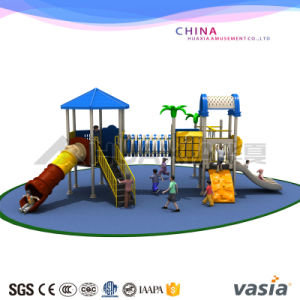 Wonderful Outdoor Playground Equipment by Vasia (VS2-3101B) pictures & photos