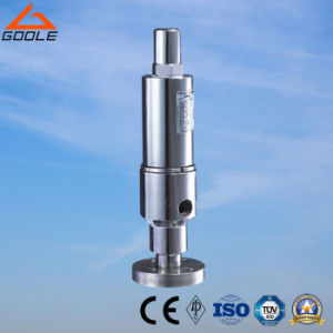 Flanged High Pressure Safety Overflow Valve (GYA42H) pictures & photos