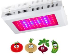 2017 90W-1000W Plant LED Grow Light for Plant Grow Improvement, Plant Grow Luminaire with 3years Warranty pictures & photos
