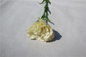Plastic Natural Touch Artificial Flowers Carnation for Decoration pictures & photos