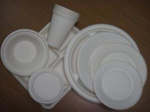 Biodegradable Sugarcane Tableware, Sugarcane Plate pictures & photos