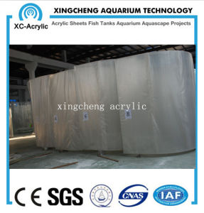 Customized Aquaria Acrylic Window Wall Price pictures & photos