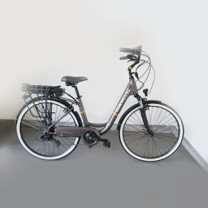 26inch Family Electric Bicycle, New City Bike, Electric Bike pictures & photos