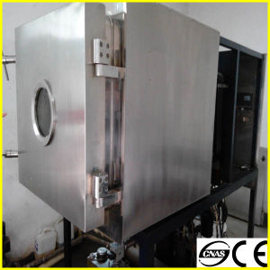 Htd Series Best Quality Vacuum Freeze Dryer for Fruit and Vegetables pictures & photos