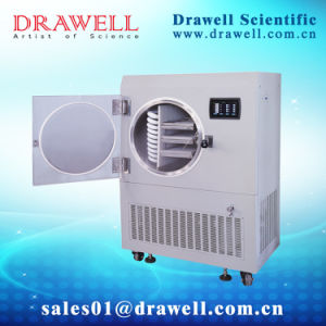 Dw-30ND in-Situ (Electric Heating) Freeze Drying Machine pictures & photos