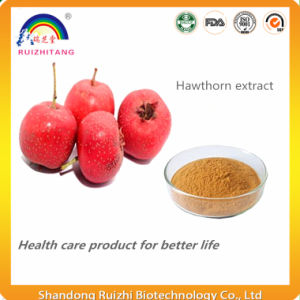 Organic Herbal Extracts Whitethorn Hawthorne Extract pictures & photos