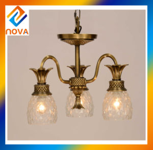 Chandelier Light for Ceiling Decoration pictures & photos
