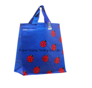 PP Fabric Handle Bag with Customized Printing (YYNWB064) pictures & photos