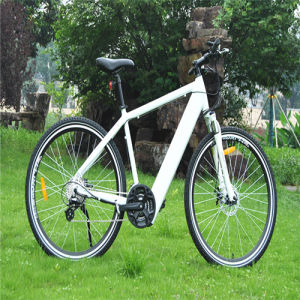 Easy Riding MTB Electric Bicycle with 36V Motor pictures & photos