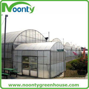 Galvanized Steel Agriculture Green House for Tomato Growing with Plastic Film Covering pictures & photos
