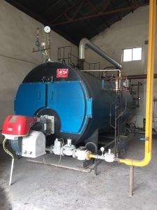 4 Tons of Natural Gas Boiler