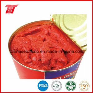 Gino Brand 800g Canned Tomato Paste of Good Quality pictures & photos