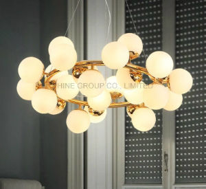 Individuality Beautiful Bar Shop Pendant Lamp for Home Hotel pictures & photos