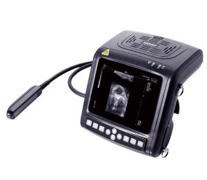 B Mode Veterinary Instrument Ultrasound Scanner for Big Animal pictures & photos