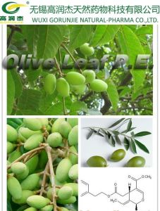 100% Natural Olive Leaf Extract Oleuropein pictures & photos