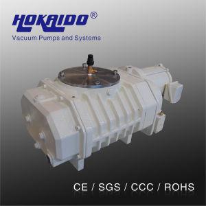 Hokaido Roots Rotary Vane Vacuum Pump (RV3000)